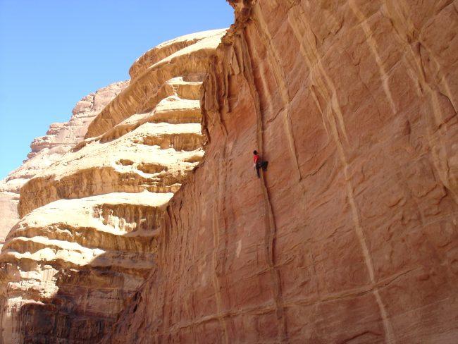 Petite couenne démente à Wadi Rum, Jordania.