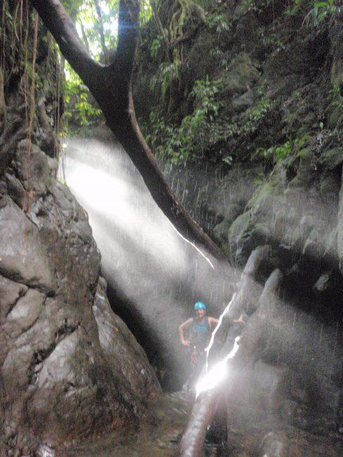Belles lumières dans un canyon en Guadeloupe.