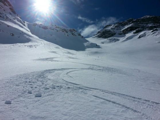 Grand pinier à ski.
