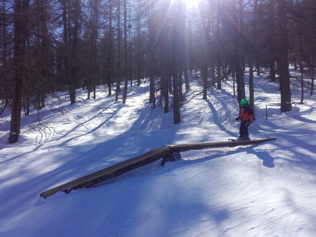 Ski à la mélèze zone de Serre Chevalier.